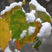 Novemberi hó