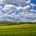 Táj Kalász Felhők