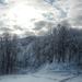 Gyűjtemény - A tél csodái