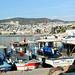 Kusadasi - Turkey 2015 525