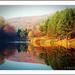 A tónál...