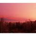 Rózsaszín napfelkelte az ablakomból