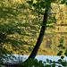 Album - A tónál szombat délután