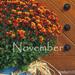Album - 2015. novemberi háttérképek