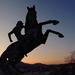 Székely huszár a lovát ugratja