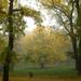 Változatok őszre, ködre 5.