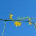 Szeptember-INDA-fotó