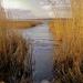 Album - 2012 Velencei-tó