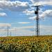 Energia források