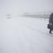 hó Varga György kaosztavasz02