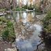 Album - tó, tavak, tavacskák