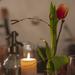 Gyertya szódával és virággal