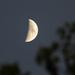 Dagadó Hold
