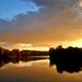 139692-Tisza.hajnal...