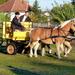 Domaszék lovasnap 010