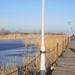 A Fertő tó üdülőtelepének főmólója télen