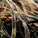 Fagyott fű