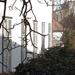 2014.02.24. Fotózás a várfalon 3.