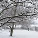Az első hó