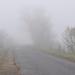 Ködös út