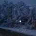 Album - Tél és hó