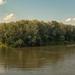 Balról a Bodrog, jobbról a Tisza