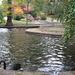 Szép parkok, köz- és nyilvános (látogatható) kertek, SzG3