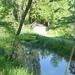 Magyarország, Vácrátót, az Arborétum, SzG3