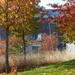 Budapest, az őszi Széllpark, SzG3