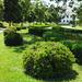 Pozsony, Grassalkovich kert, SzG3