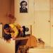 Album - Manhoff: Bagoly és Cica | Orlai Produkció