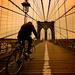 Album - New York
