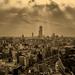 Album - Oszaka 2012