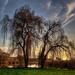 Vekeri tó, Debrecen VI.