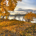 Aranyló-ősz