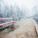 Vonatra várva