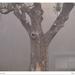 Reggeli ködben 5