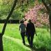Album - 2013 London - Golders Green parkja