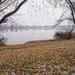 Omszki tó