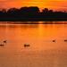 Album - Tisza-tó