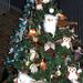 Boldog Karácsonyt Indafotósok!