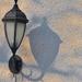Délutáni lámpák