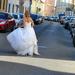 Szökik a menyasszony...
