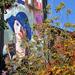 Őszül a Kék kalapos nő is