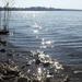 Napfény csillan a tó vizén