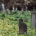 Régi-régi zsidó temető