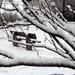 Hó, hó és hó