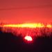 Naplemente - 2013.március 21. 18:07