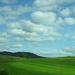 Kék az ég és zöld a fű ...