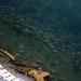 Album - Ohrid